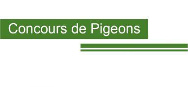 Concours de Pigeons